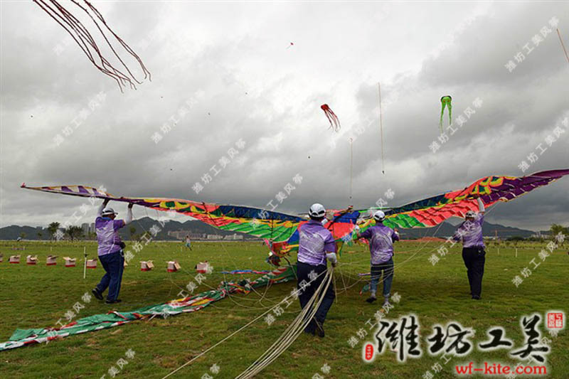 潍坊风筝协会珠海格力风筝节