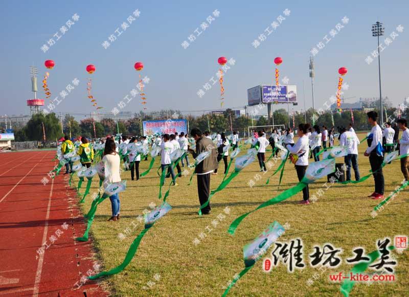 潍坊风筝协会安徽阜阳风筝节